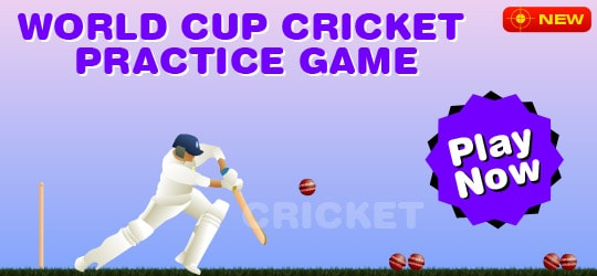 World Cup Practice Cricket Game