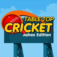 Table Top Cricket Game