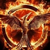 Hunger Games Catching Fire Game - iPhone Games